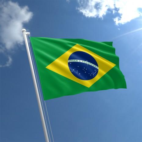 brazil-flag-std1