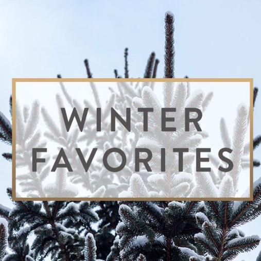 Winter-Favorites-f[1]